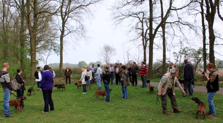 http://www.peterenemmy.nl/BGS%20Dag/IMG_1741